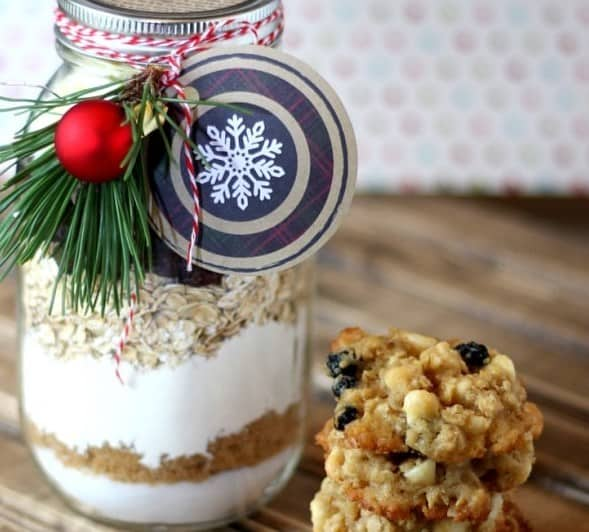 DIY Christmas Gifts: cranberry white chocolate oatmeal cookies