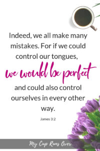 Bible verses for Perfectionists: James 3:2