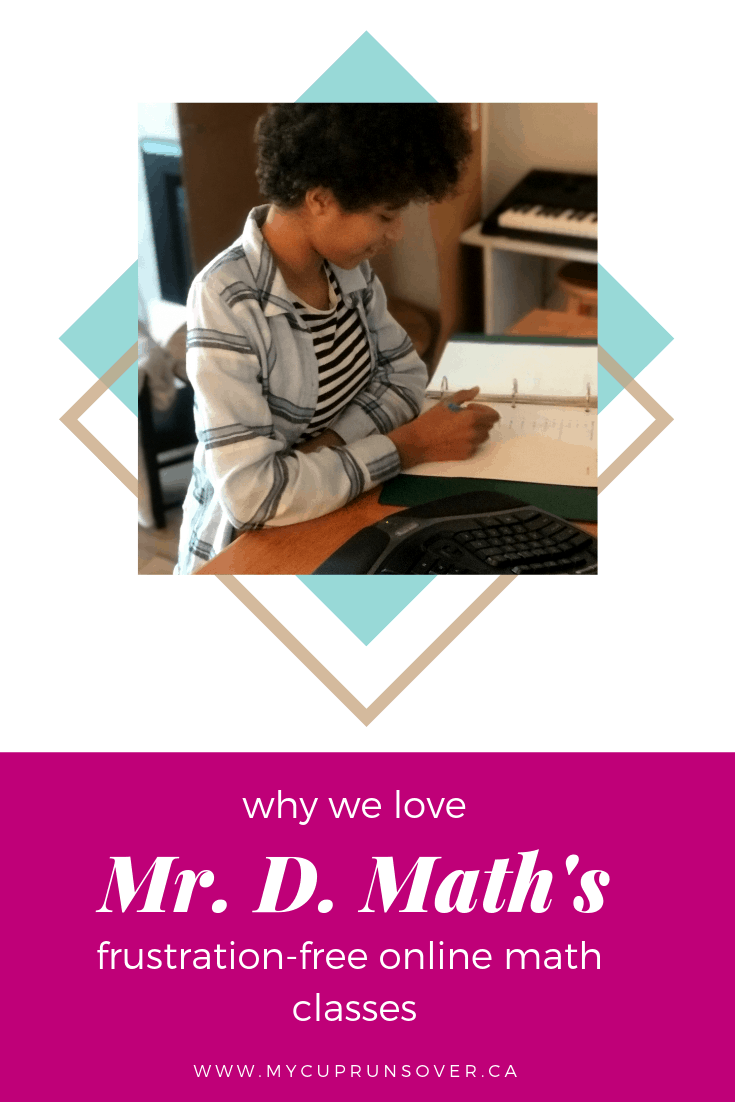 why we love Mr D's online math courses