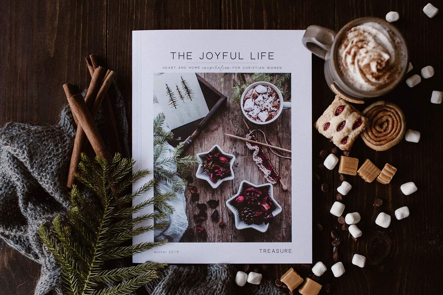 Joyful Life Magazine Treasure Issue